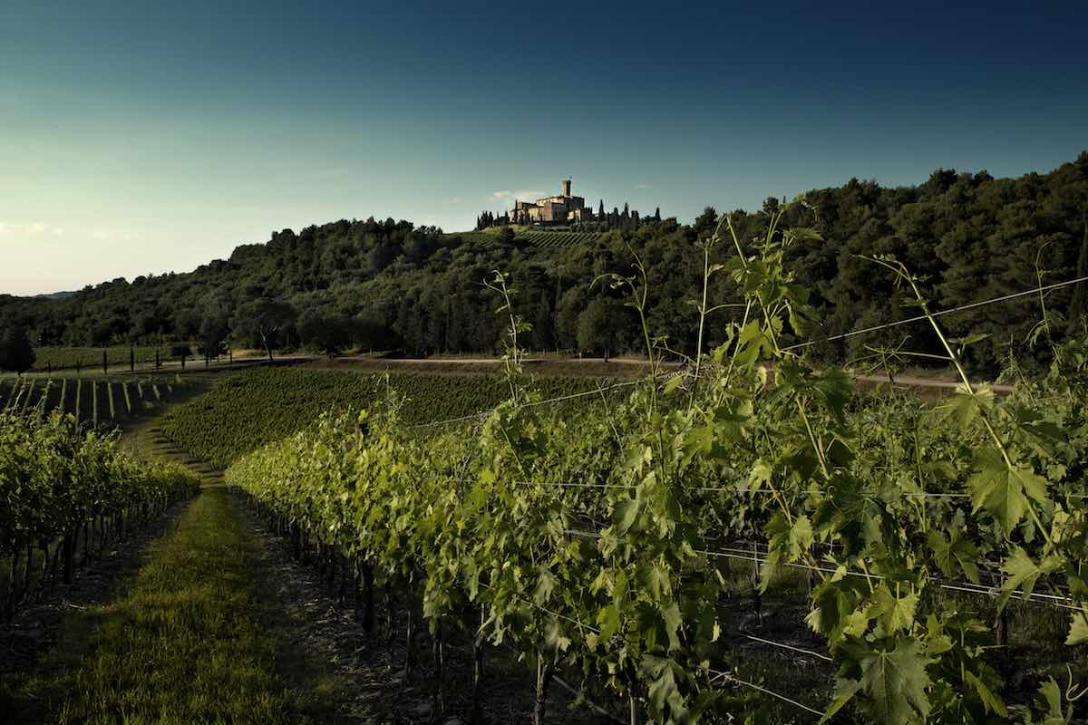 Jazz & Wine in Montalcino: il festival più cool dell'estate si farà