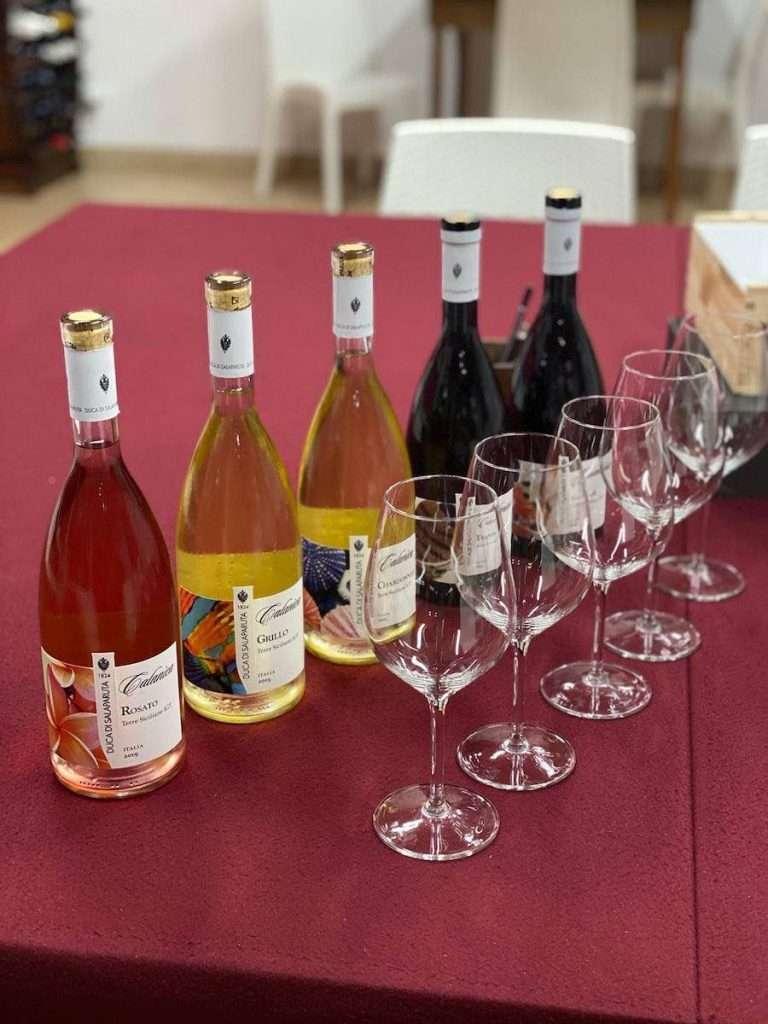 Duca di Salaparuta ha scelto di dare forma alla nuova linea Calanìca, per raccontare quegli stessi vitigni protagonisti dei blend della serie i Territoriali, ma seguendo uno spartito differente