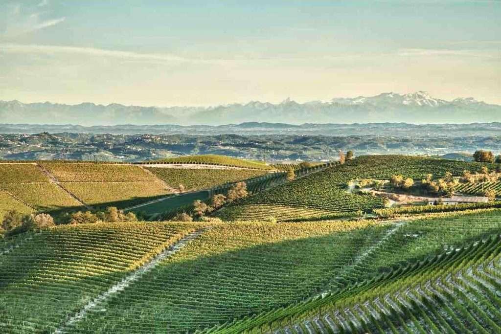 Wine Experience Across, il nuovo progetto enoturistico di Mondodelvino, porterà i wine lovers di tutto il mondo in un viaggio alla scoperta dei luoghi che circondano le cantine di Cuvage, Ricossa e Poderi dal Nespoli