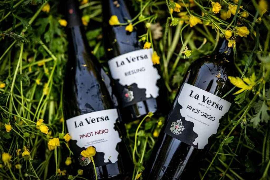 Obiettivo del prossimo triennio per Terre d'Oltrepò: continuare e perfezionare tutti quei progetti che le hanno fatto fare il salto di qualità come, per esempio, la collaborazione con il noto enologo Riccardo Cotarella per la selezione vini di La Versa