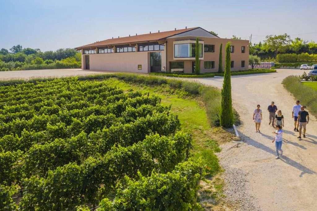 Anche la cantina Montonale sarà tra i protagonisti, il 9 luglio, della serata degustazione da HangarQ, a Milano