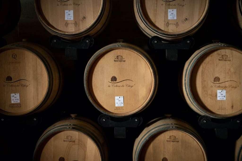 La nuova joint venture Advini Italia mira in primis a posizionare le etichette dei fine wine firmati dalla cantina veneta nell'Horeca degli oltre 100 Paesi dove opera la rete distributiva del gruppo d'Oltralpe