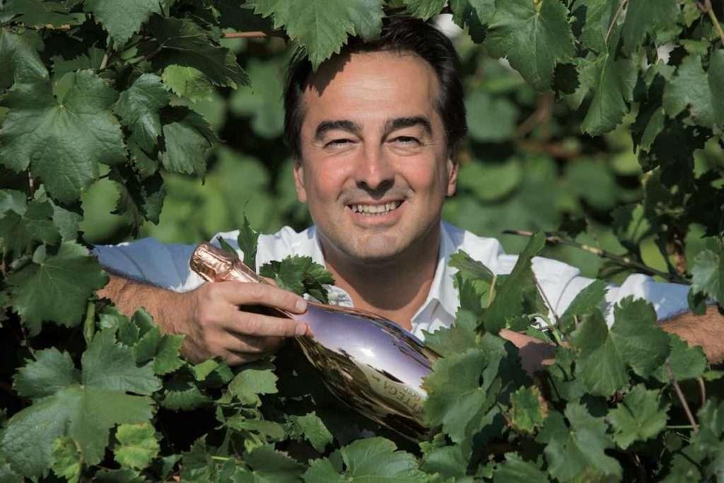 A Ca' di Rajo erano contestati i reati di contraffazione dei marchi di proprietà di Sandro Bottega relativi alle bottiglie color oro e rosa e la vendita di prodotti con segni mendaci in riferimento alle bottiglie di Bottega color argento