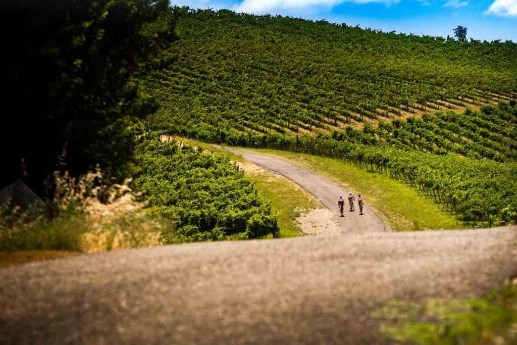 La Strada del Vino ha messo una freccia ed è partita verso la costruzione di un progetto che pone al centro il brand Oltrepò Pavese – Strada del Vino e dei Sapori