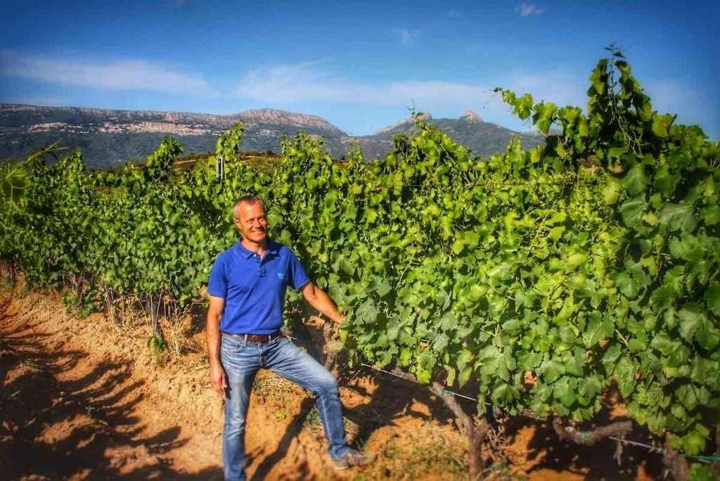 Mario Mereu in vigna scommette innanzitutto sul principe dei vitigni di Sardegna: il Cannonau