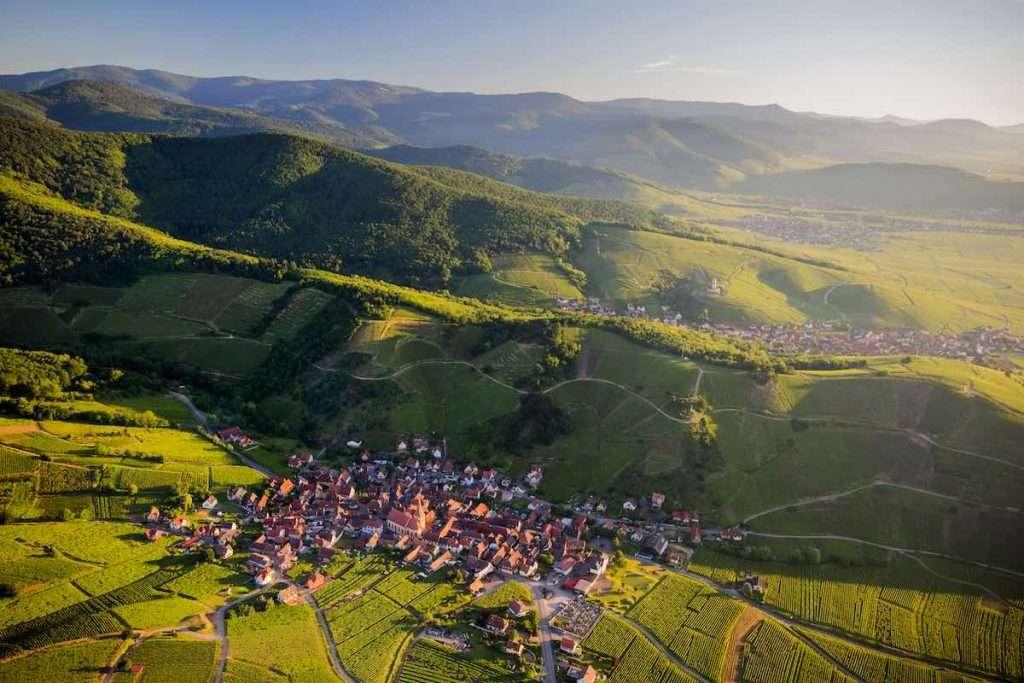 Oltre 3.500 i visitatori già accreditati a Millésimes Alsace DigiTasting. E le iscrizioni, aperte fino all'ultimo minuto, continuano a crescere