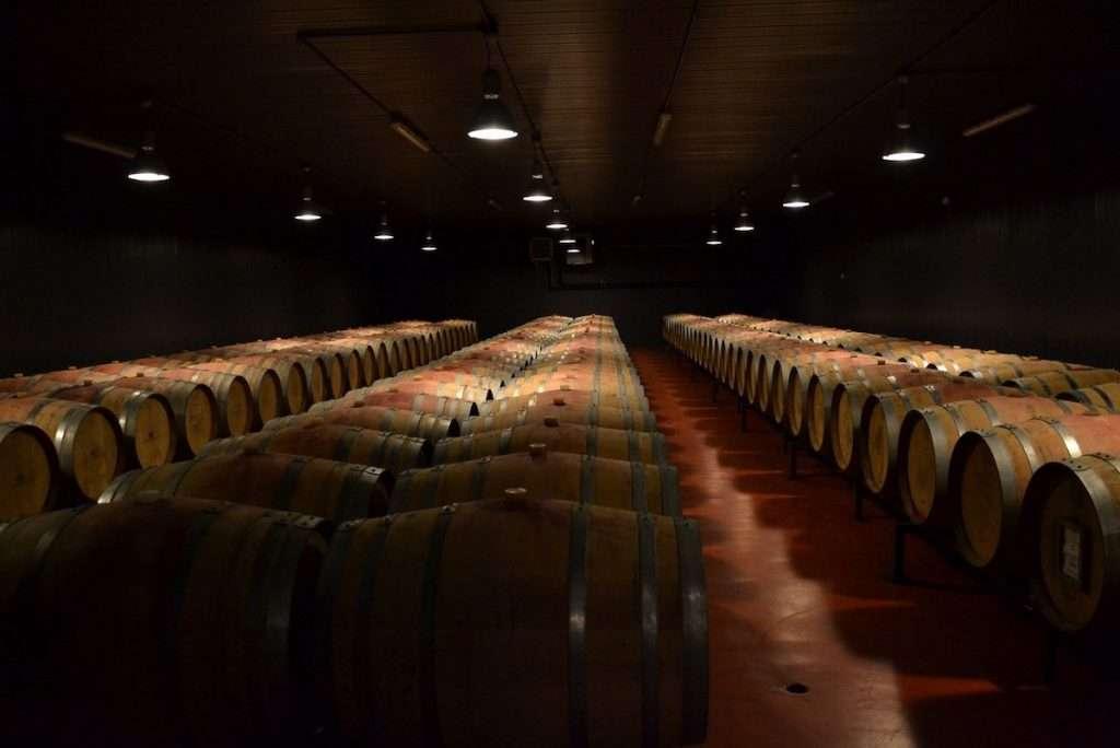 """""""L'equilibrio determina l'eleganza nei vini strutturati e la piacevolezza nei vini giovani"""" (Chiara Lungarotti)"""