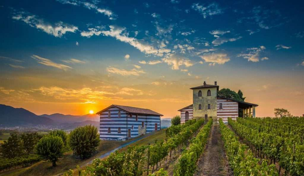 """Con """"Brunch al castello"""" sarà possibile godere di un momento gourmet all'interno del panoramico vigneto del Castello Berlucchi"""