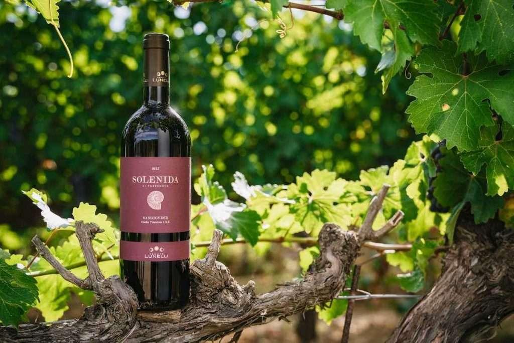 """Come tutti gli altri vini di Podernovo, anche il nuovo Solenida è certificato biologico e proviene da vigneti """"Biodiversity Friend"""""""