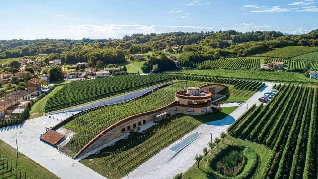 Sono proprio vitigni Piwi a ricoprire il tetto della nuova cantina Giusti Wine