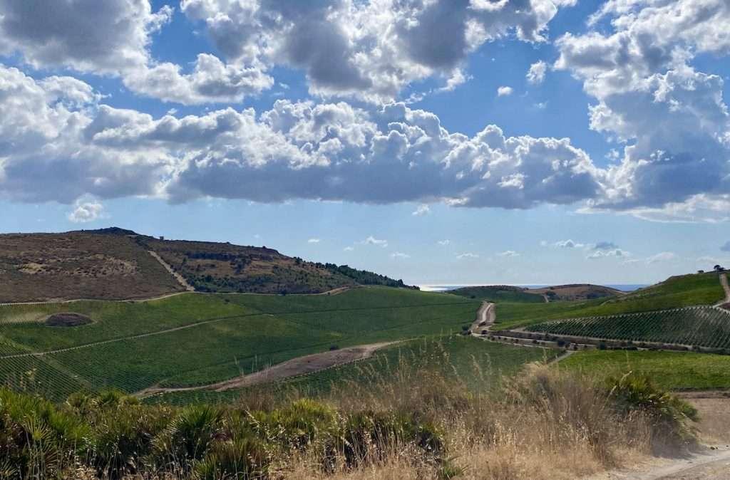 Quello di Repertorio 1694 è racconto della Sicilia di Planeta, che si rifà a sei cantine dislocate in cinque territori: Menfi, Vittoria, Noto, Etna e Capo Milazzo