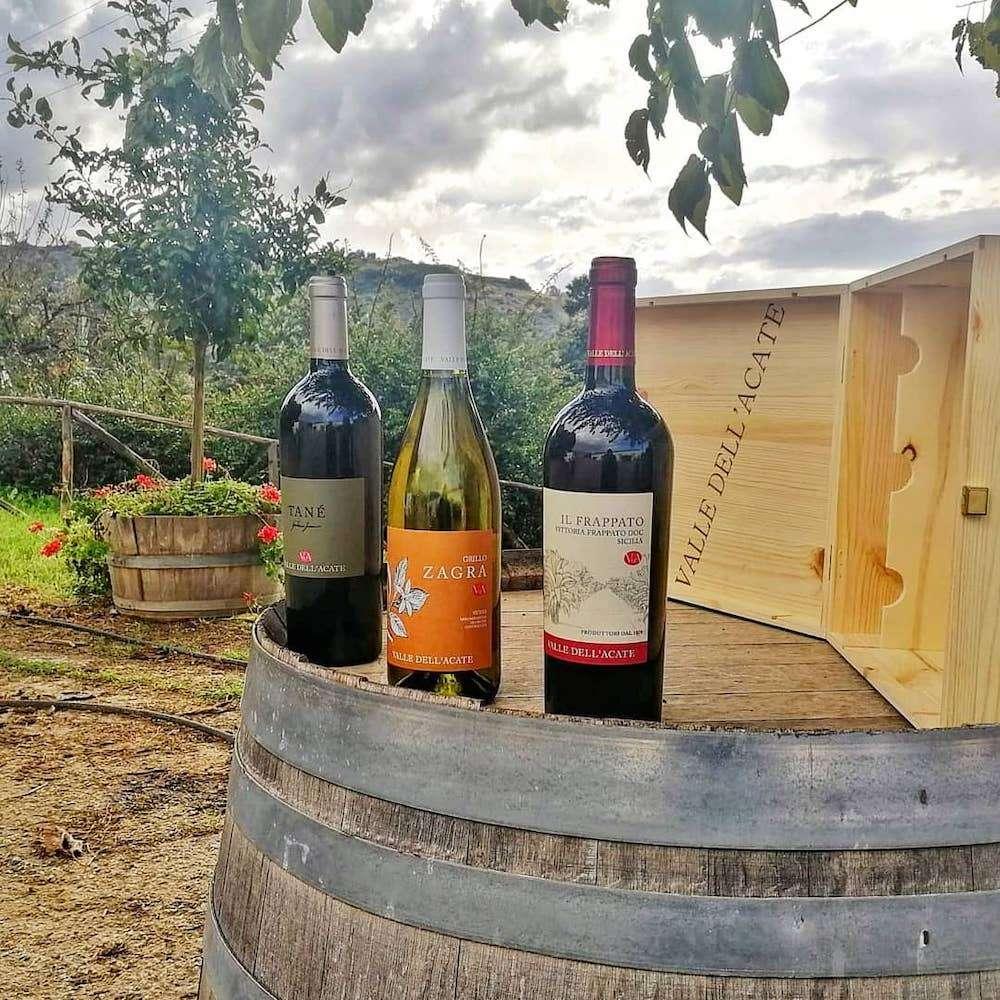 Da sei generazioni una delle realtà vitivinicole più importanti della Sicilia sud-orientale, Valle dell'Acate ha puntato innanzitutto sulla coltivazione dei vitigni autoctoni