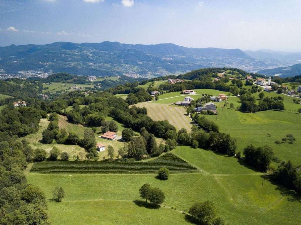 Su un altopiano in frazione Valdagno, a Vicenza, troviamo la cantina Terre di Cerealto, uno dei pionieri della coltivazione di vitigni Piwi in Veneto