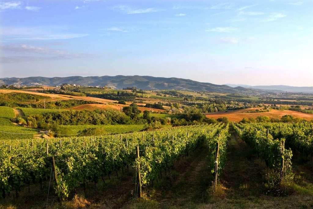 """""""Le nuove tecnologie sono fondamentali per riuscire a fare una viticoltura e una produzione di qualità che riduca al minimo l'impatto sull'ambiente"""" (Chiara Lungarotti)"""