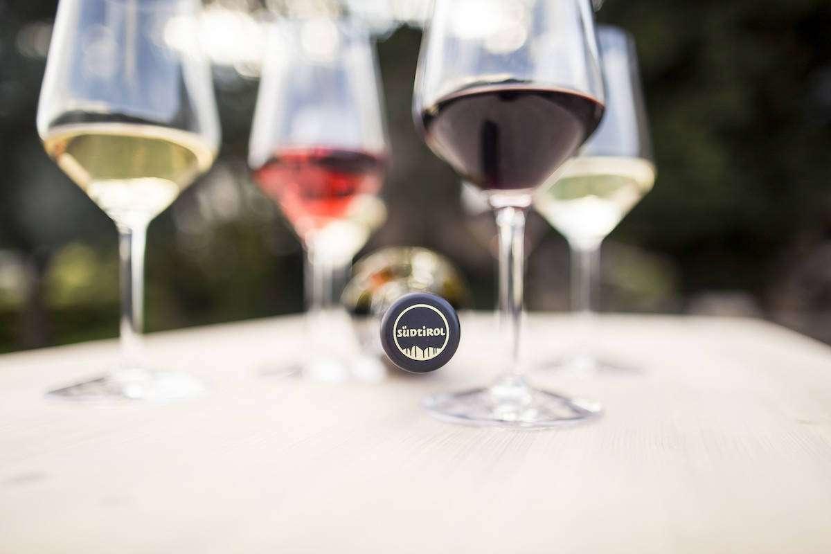 L'annata 2020 e l'Alto Adige del vino: Pinot Nero e Lagrein über alles
