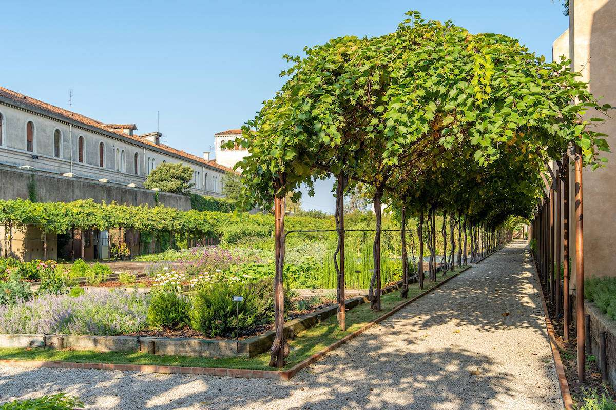 Feel Venice 2021: nuova veste per l'appuntamento con i vini della Serenissima