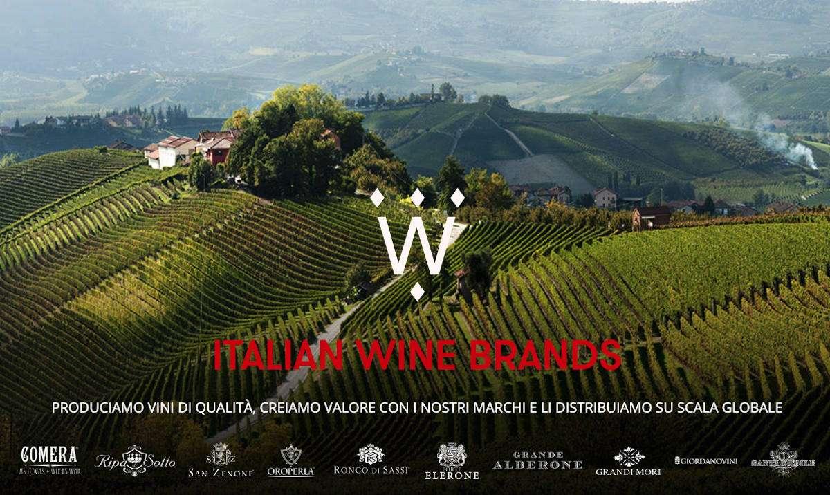 Italian Wine Brands acquisisce il 100% di Enoitalia: nasce il gruppo privato del vino numero uno in Italia