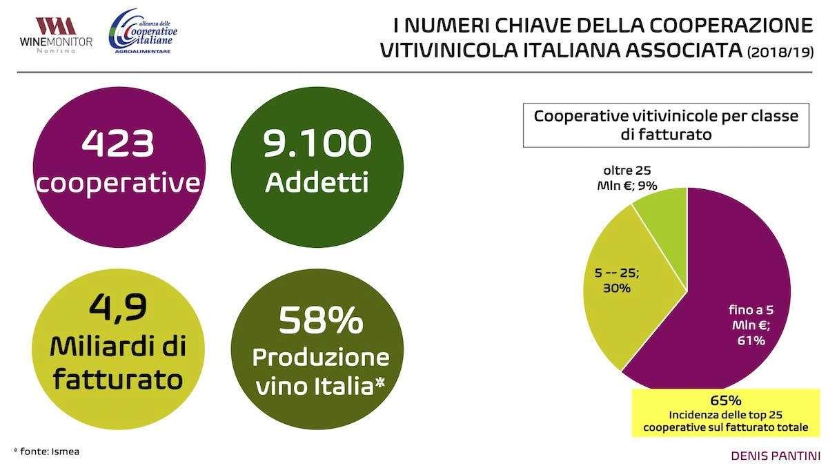 Il Covid-19 non ferma la corsa delle cooperative del vino: numeri e prospettive