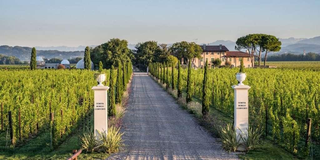 Fondata nel 1975 da Gianni Vescovo, la Tenuta di Borgo Conventi è passata in mano alla famiglia Moretti Polegato nel 2019