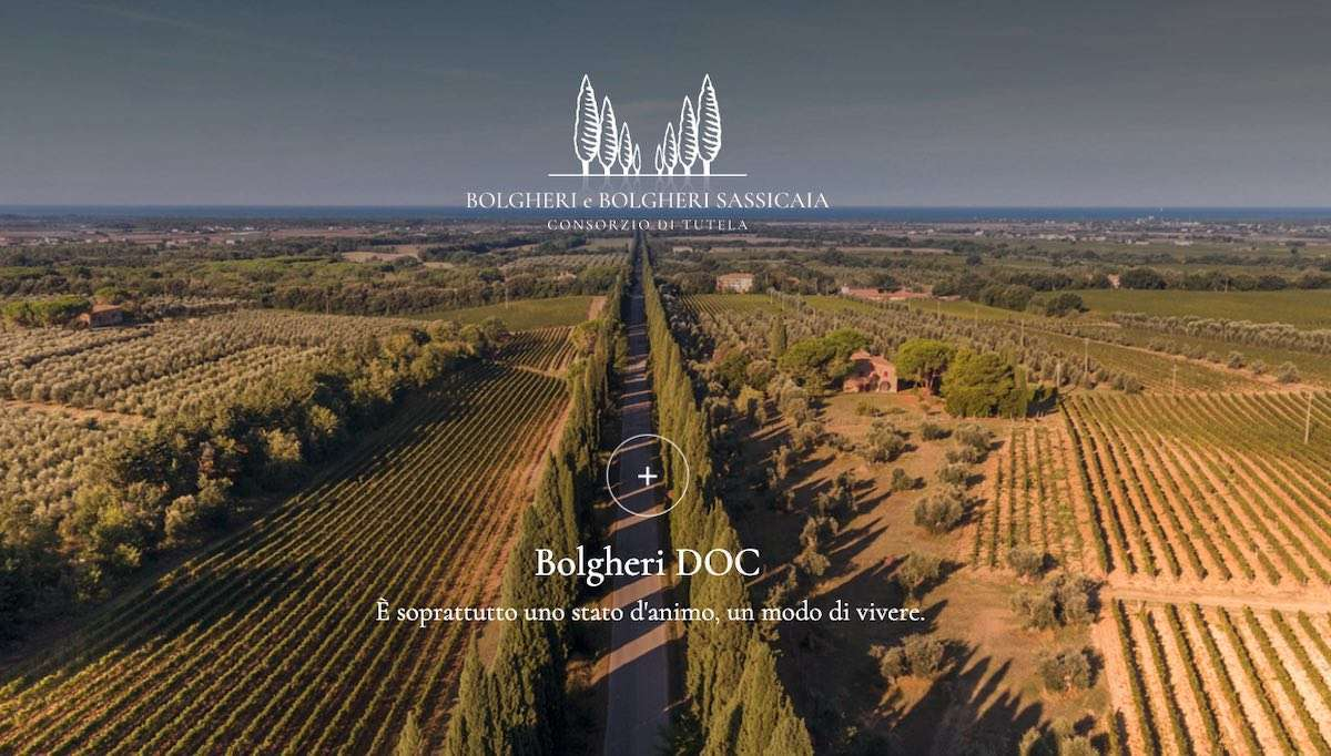Bolgheri e Bolgheri Sassicaia: crescono valore e immagine
