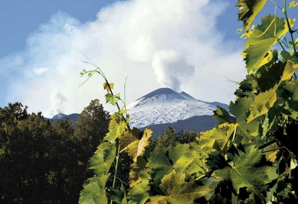 La famiglia Di Gaetano è pronta ad accogliere i visitatori Firriato, all'interno di un paesaggio di rara bellezza