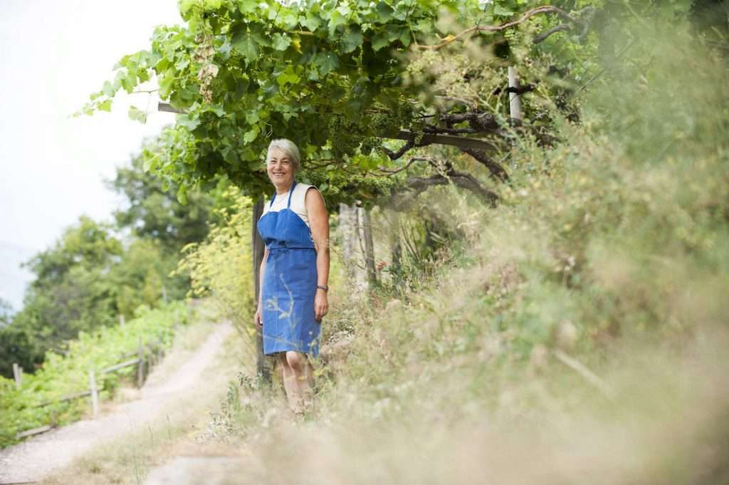 Operare in completa armonia con la natura: questa la scelta di Gertrud Vogel a Maso Premstaller, dove nasce Vigna Premstallerhof Select