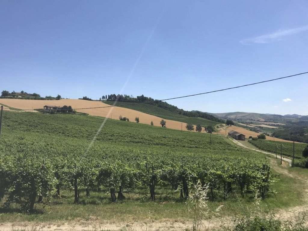 La Big Bench di Travaglino a Calvignano è la numero 149. Colore rosso-bianca. È nel versante sud della valle del Ghiaie, nel Comune di Calvignano, ed è stata realizzata per permettere agli appassionati di godere di un bellissimo scorcio sui vigneti e boschi dell'Oltrepò