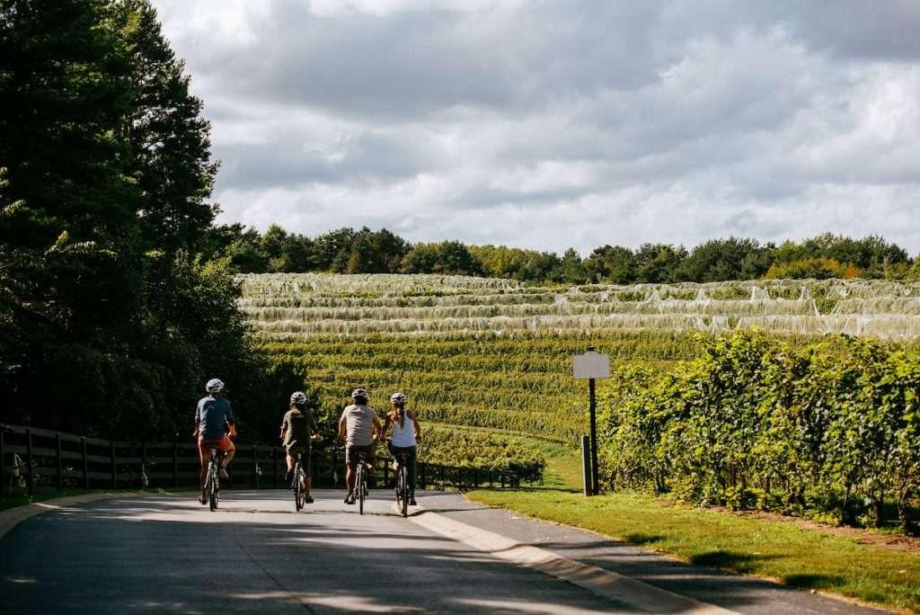 L'Altarocca Wine Resort si trova sulle colline umbre al confine con la Toscana a due passi da Orvieto