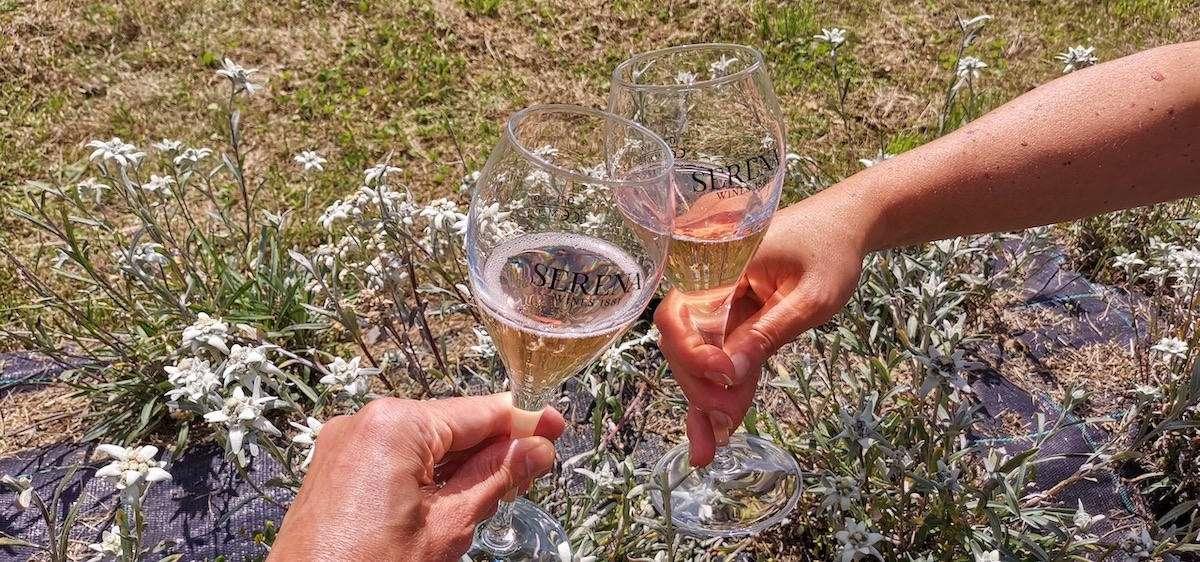 Brindisi ad alta quota per il Prosecco Serena Wines 1881