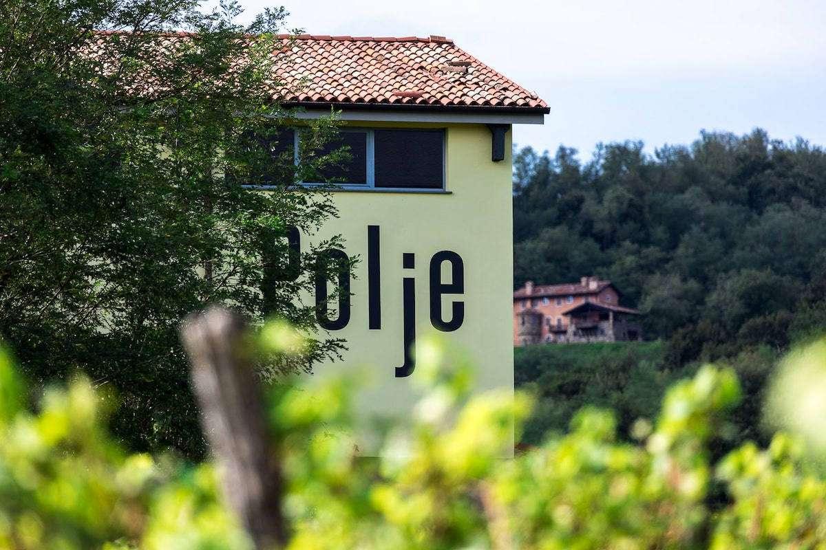 Il vino bianco migliore d'Italia è il Collio da 5 stelle di Polje