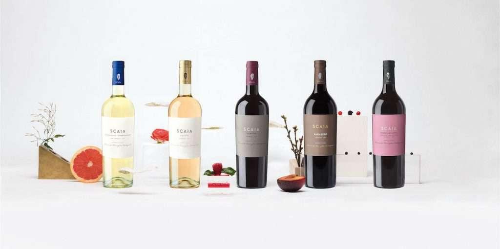 Scaia, vino moderno e iconico, unico nel suo genere