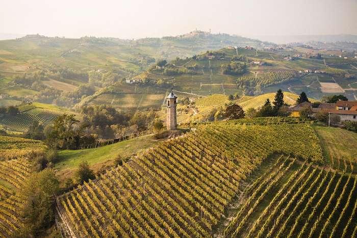 Moscato d'Asti Nivole: more to love, more to share