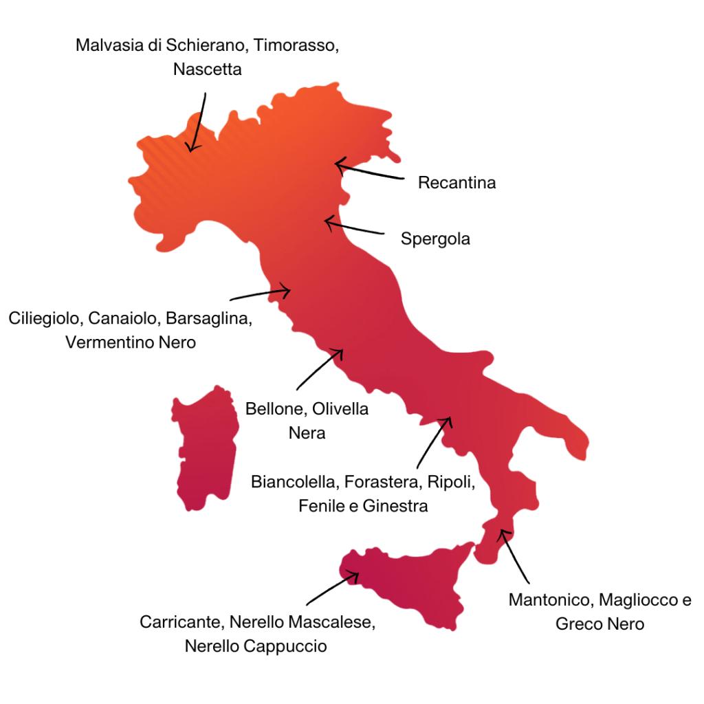 Nel racconto di Autochtona la biodiversità dell'Italia del vino
