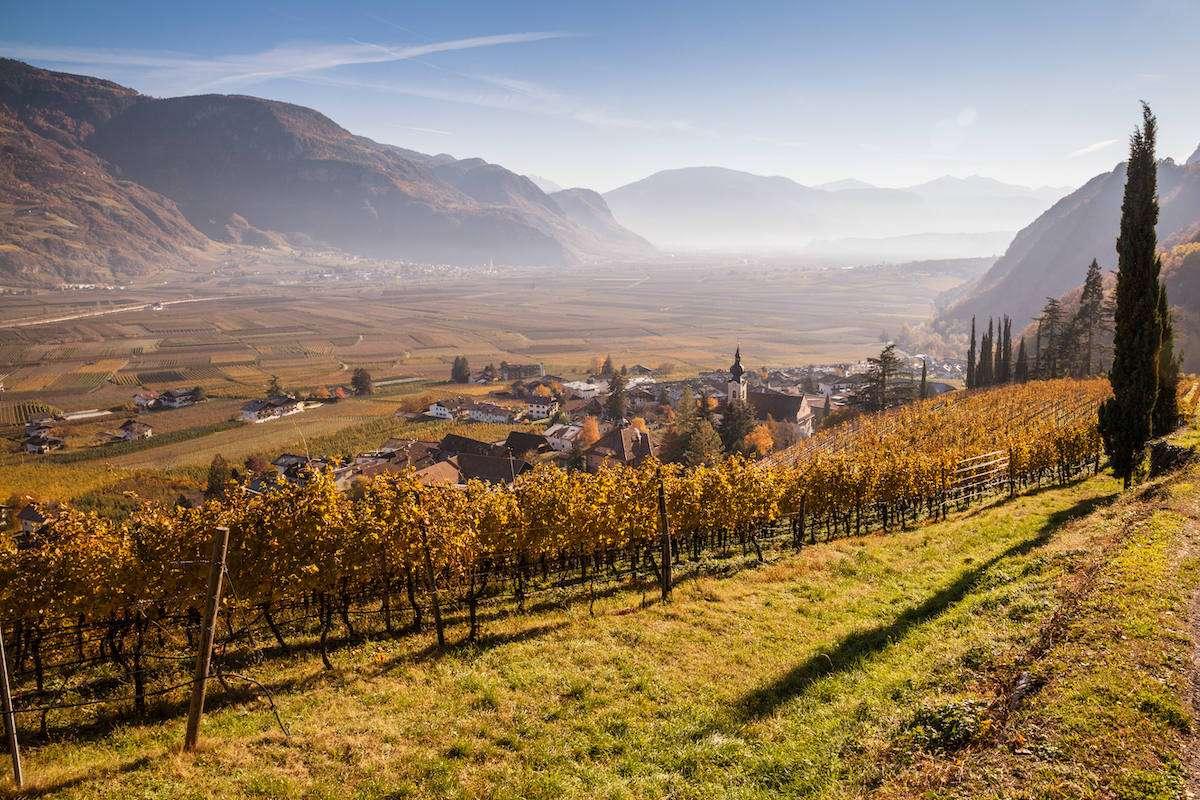 Nals Margreid: benvenuto autunno in quattro vini